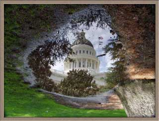 California capitol dome reflected in a puddle